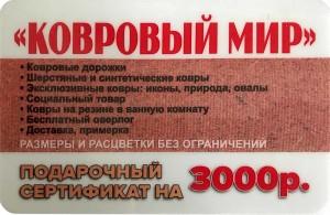 3000-2