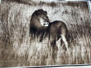 Ковер и изображением льва